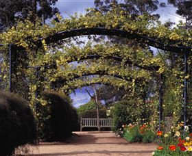Blue Mountains Botanic Garden - Accommodation Search