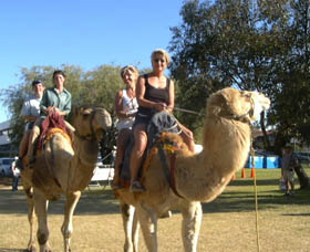 Calamunnda Camel Farm  - Accommodation Search