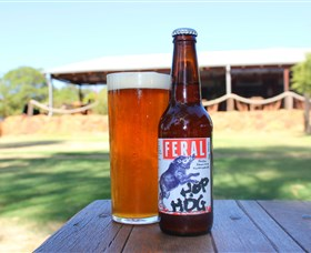 Feral Brewing Company - Accommodation Search