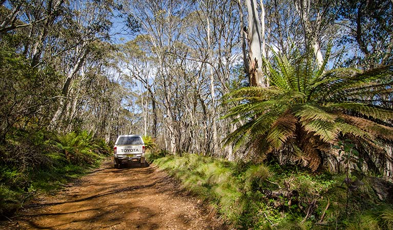 Barrington trail - Accommodation Search