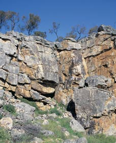 Badgingarra Nature Trail - Accommodation Search