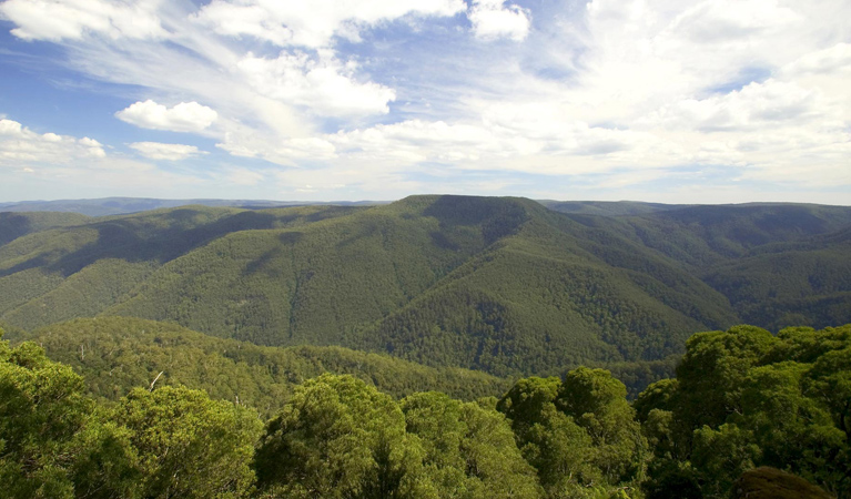 Barrington Tops National Park - Accommodation Search