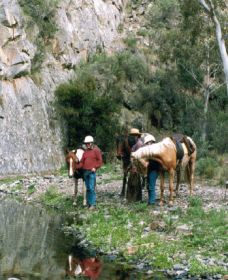 Yarramba Horse Riding - Accommodation Search