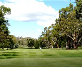 Cooma Golf Club - Accommodation Search