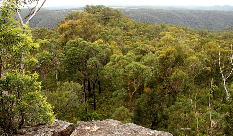 Mount Olive lookout - Accommodation Search