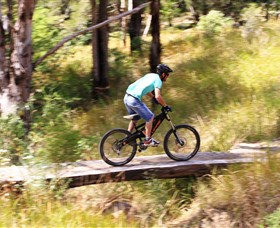 The Steps Mountain Bike Park - Accommodation Search