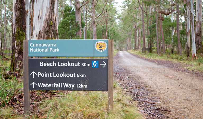 Beech lookout - Accommodation Search