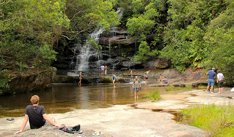 Somersby Falls picnic area - Accommodation Search