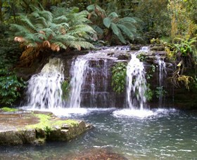 Barrington Tops National Park Walks - Accommodation Search