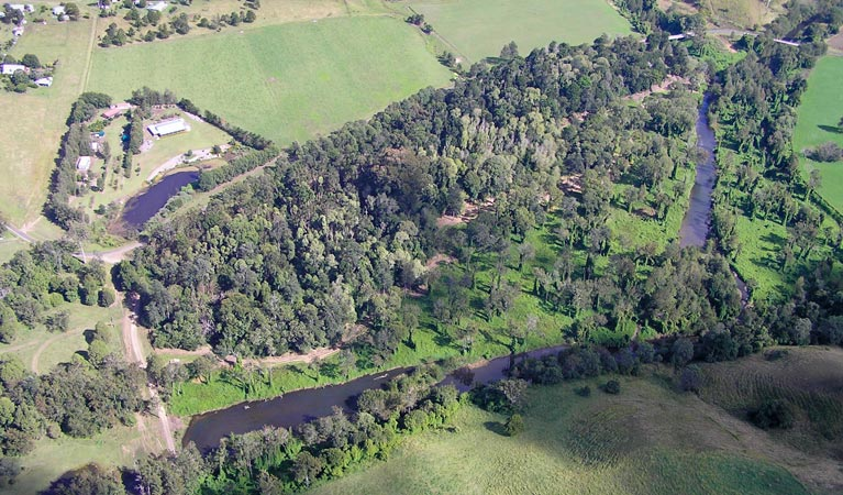 Moore Park Nature Reserve - Accommodation Search