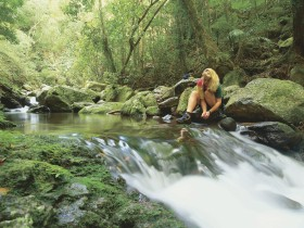 Lower Ballanjui Falls - Accommodation Search
