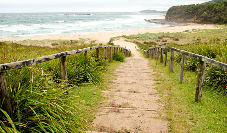 Pretty Beach to Durras Mountain walking track - Accommodation Search