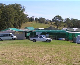Tinonee Orchid Nursery - Accommodation Search