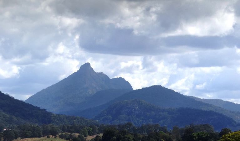 Wollumbin National Park - Accommodation Search
