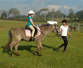 Port Macquarie Horse Riding Centre - Accommodation Search