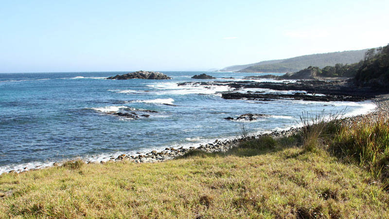 Mimosa Rocks National Park - Accommodation Search