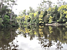 Arthur River - Accommodation Search
