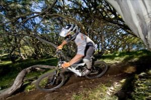 All Terrain Cycles - Accommodation Search