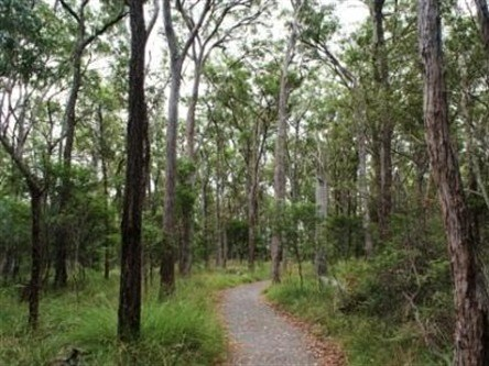 Caboolture Regional Environment Education Centre - Walking Trails - Accommodation Search