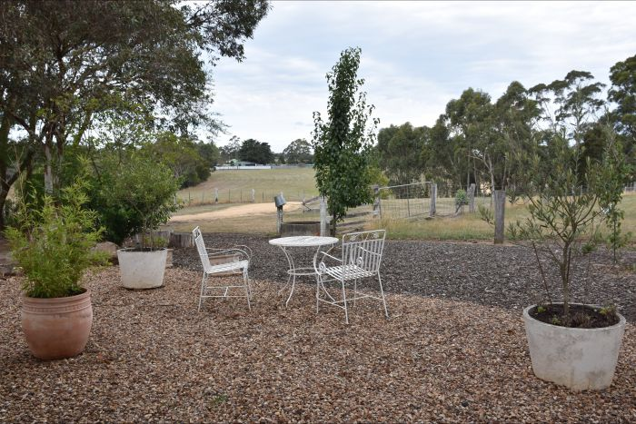 Cygnet Park Country Retreat - Accommodation Search