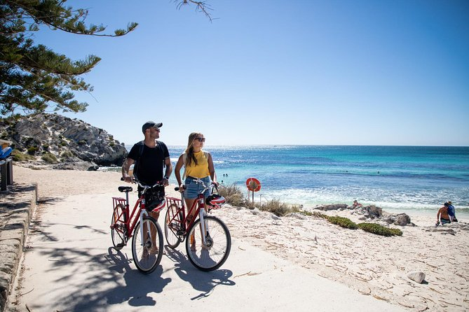 Rottnest Island with Bike Hire from Perth or Fremantle - Accommodation Search
