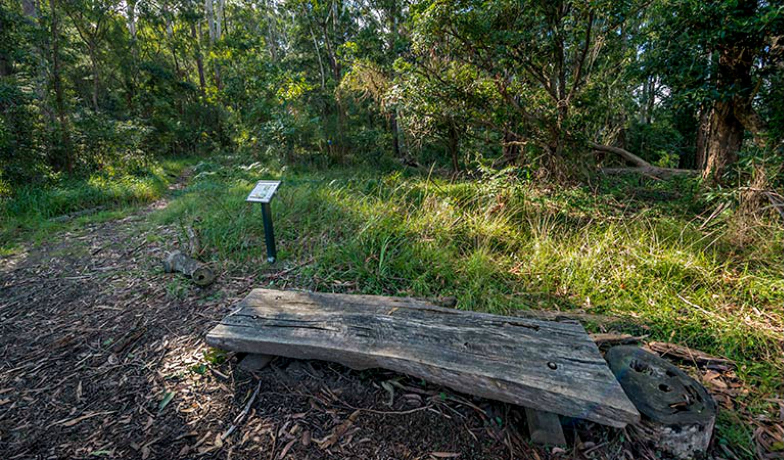 Browns Forest Loop Trail - Accommodation Search