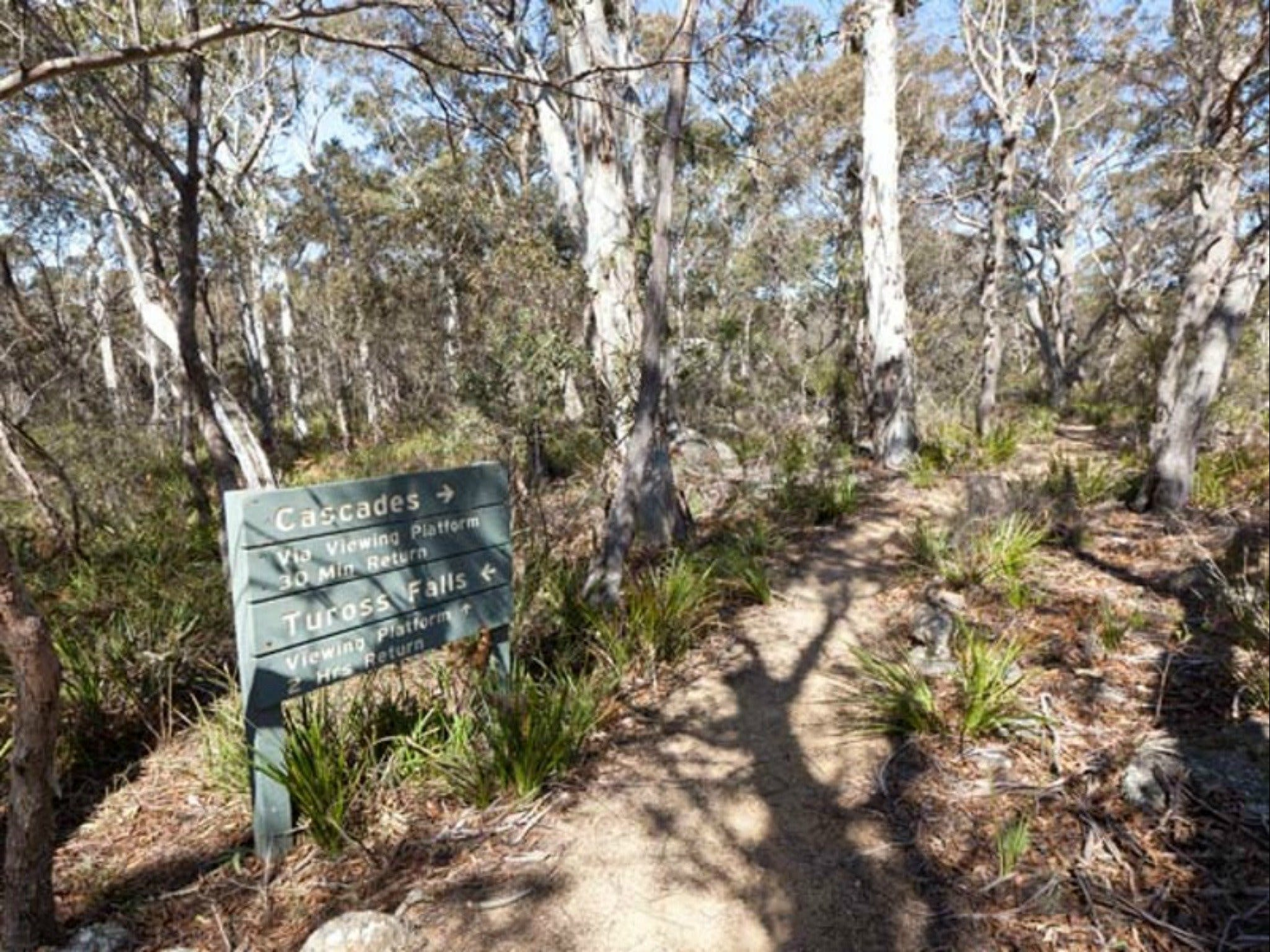 Cascades walking track and viewing platform - Accommodation Search