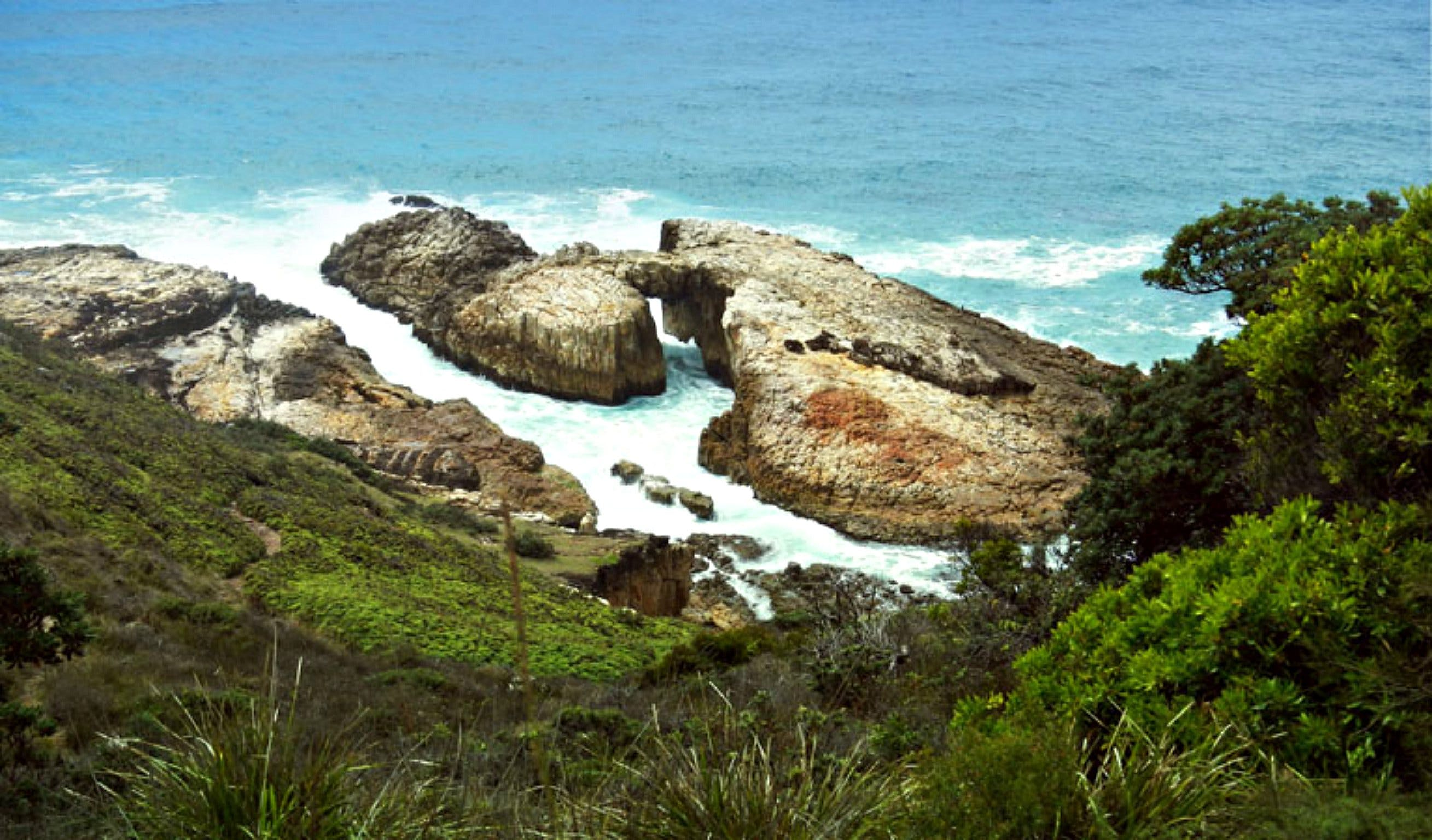 Diamond Head Loop Walk - Accommodation Search