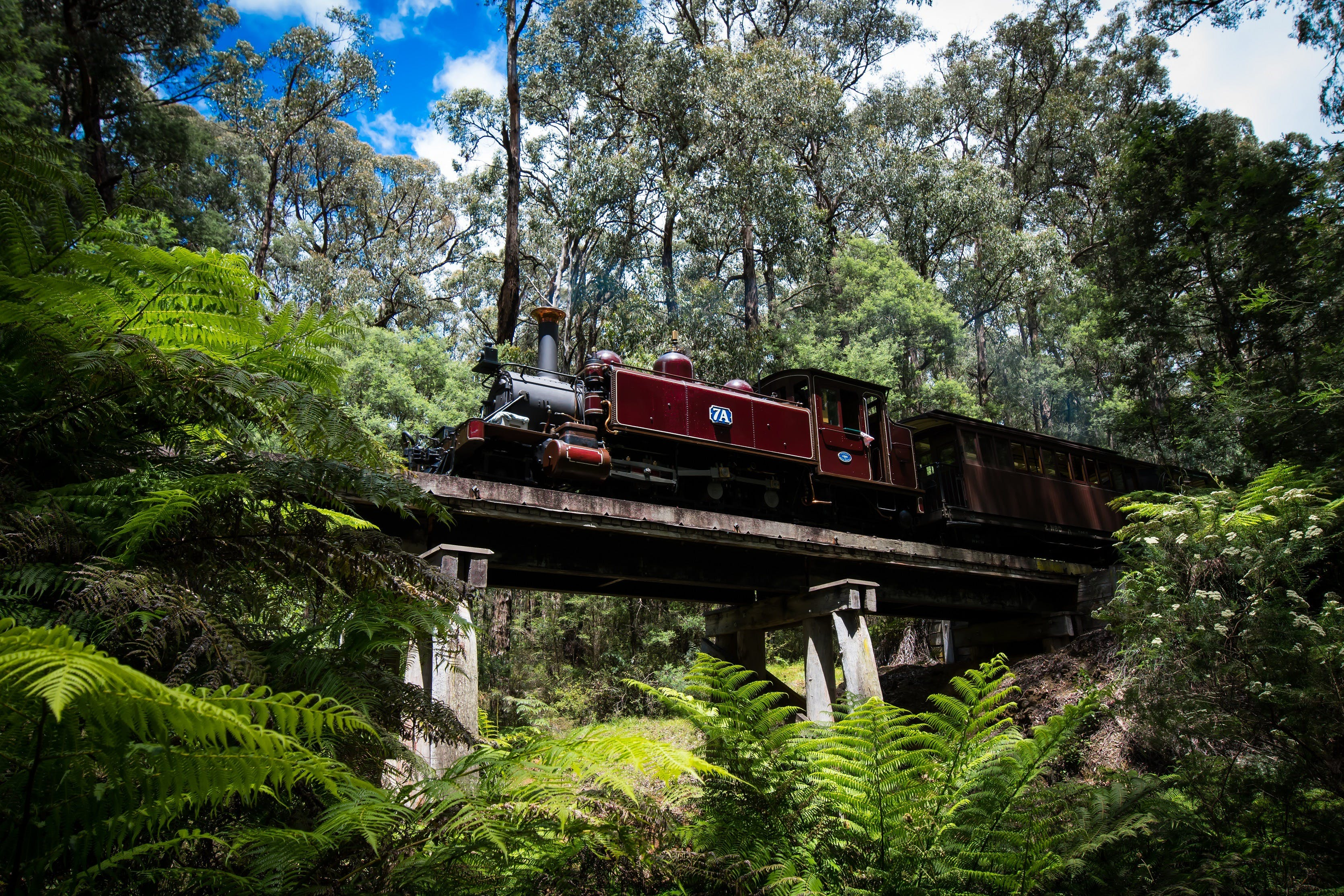 Puffing Billy Railway - Accommodation Search