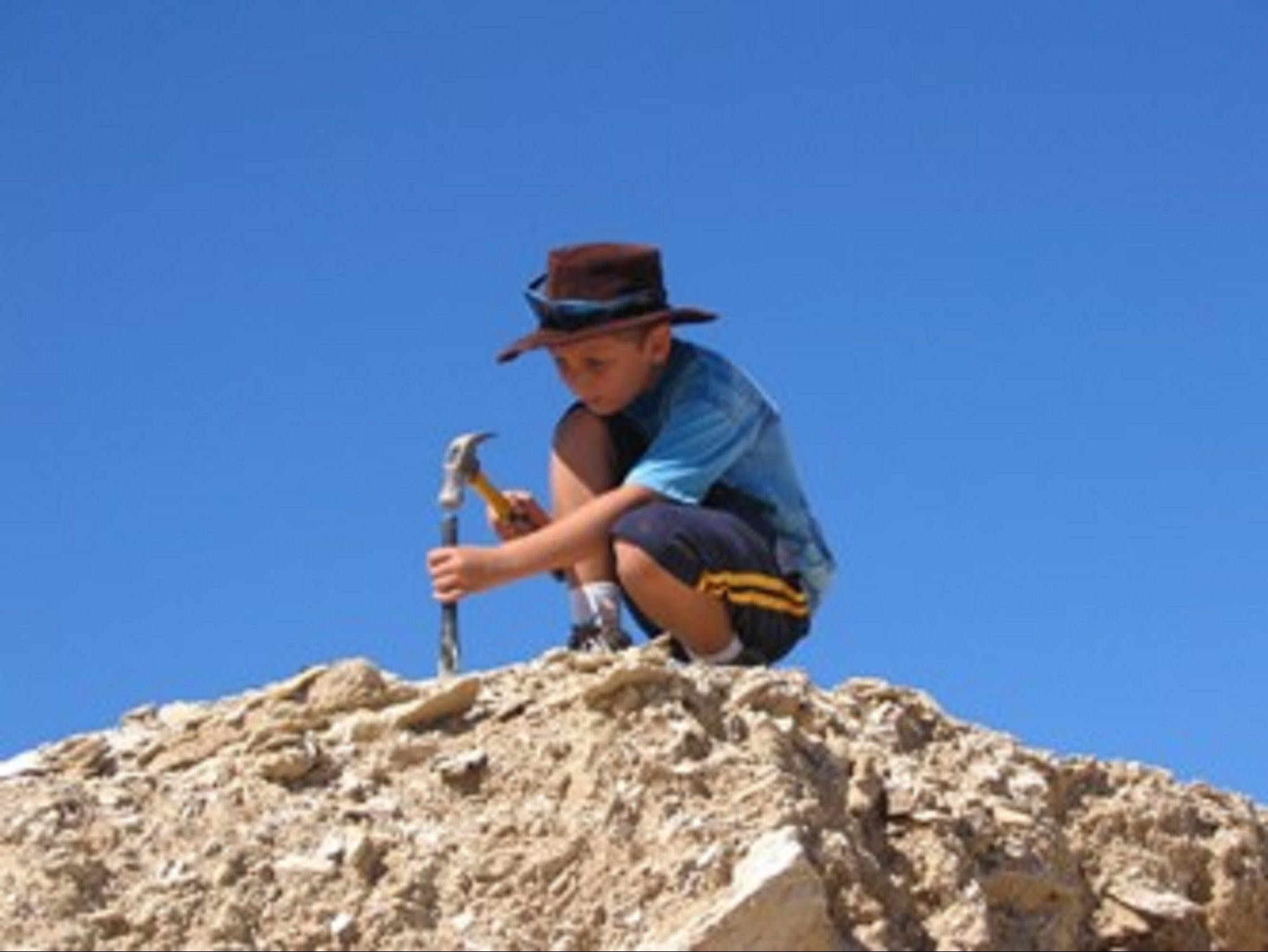 Richmond Fossil Hunting Sites - Accommodation Search