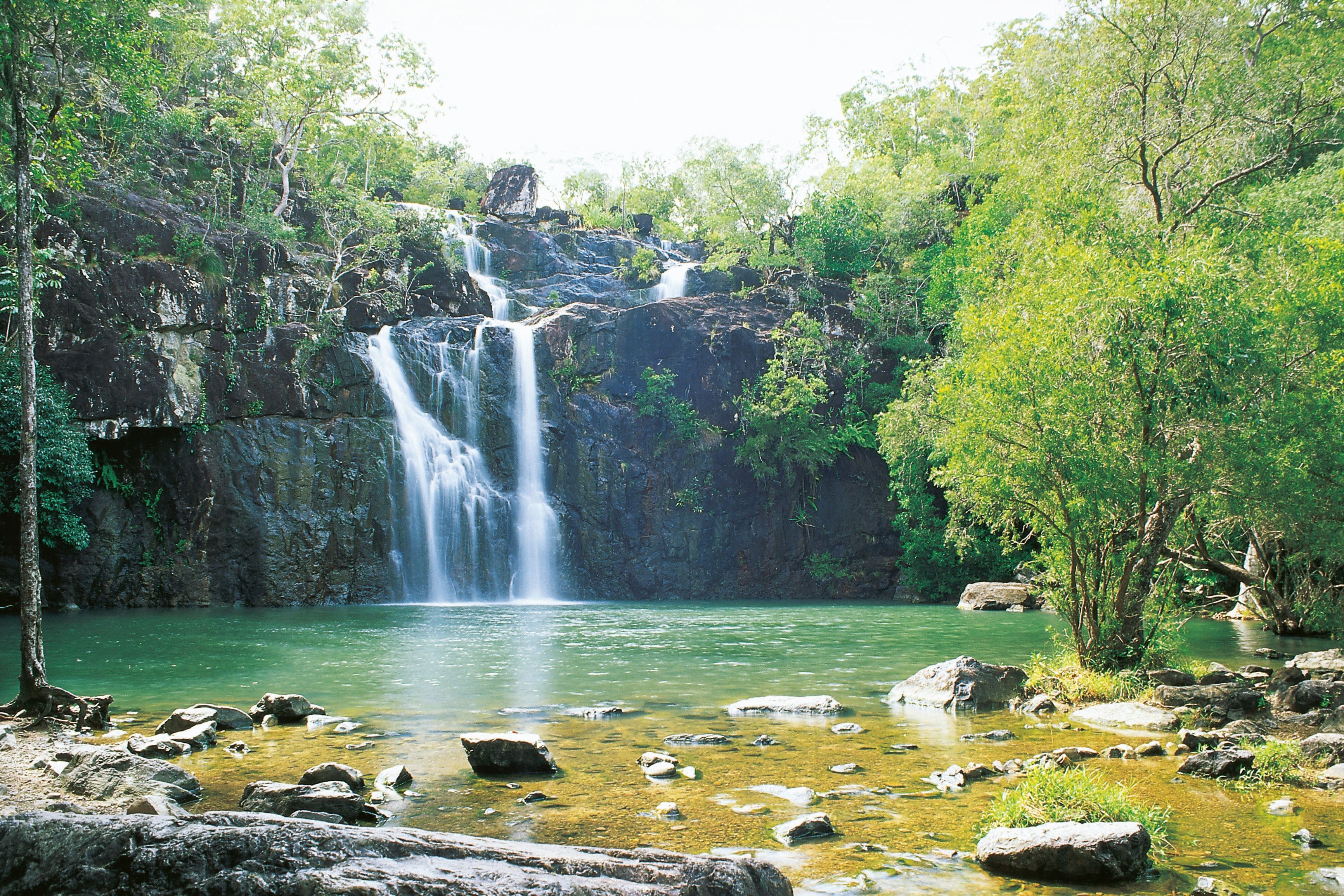Airlie Beach to Cedar Creek Falls - Accommodation Search
