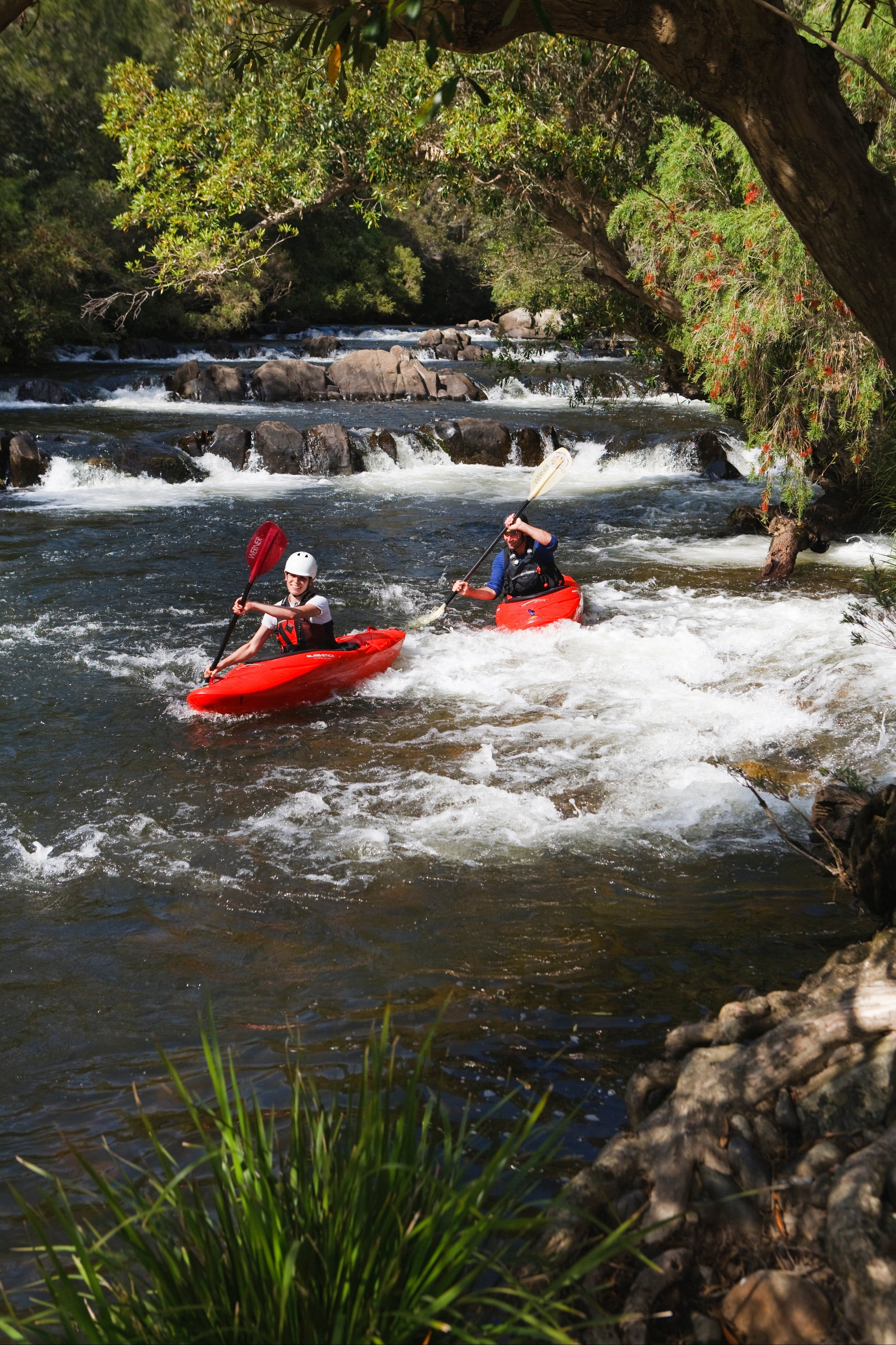 Barrington River - Accommodation Search