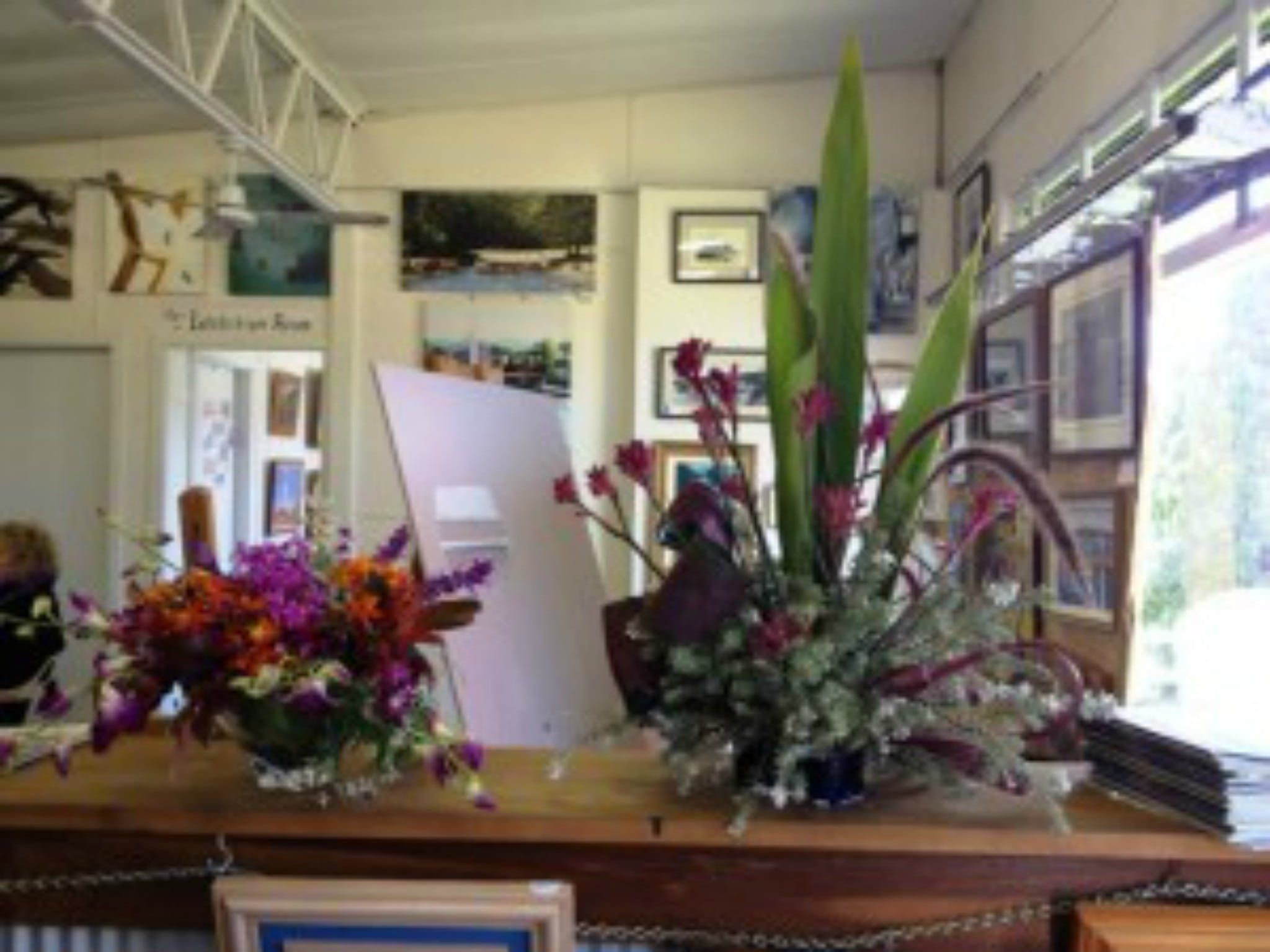 Dungog Arts Society - Accommodation Search