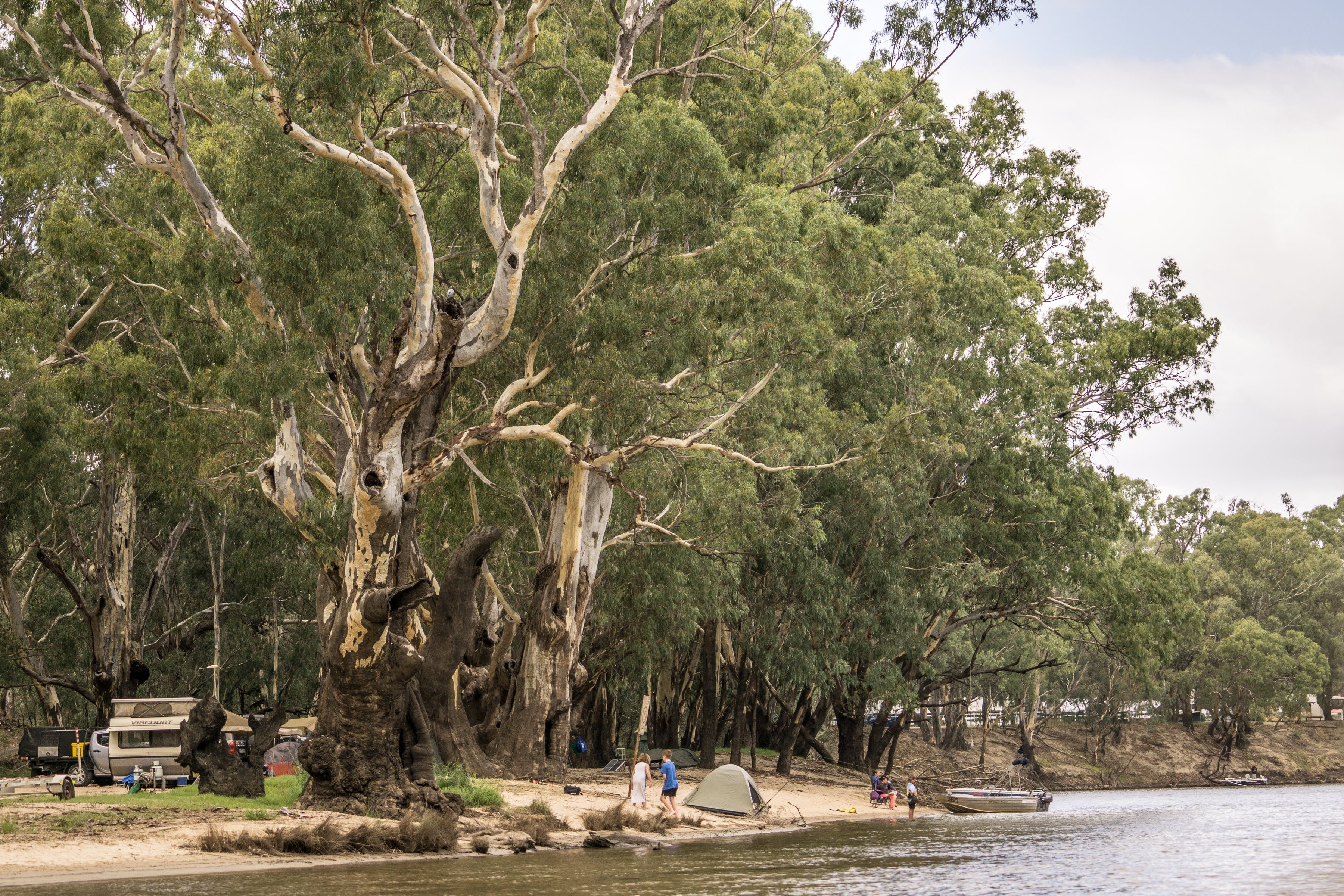 Edward River - Accommodation Search
