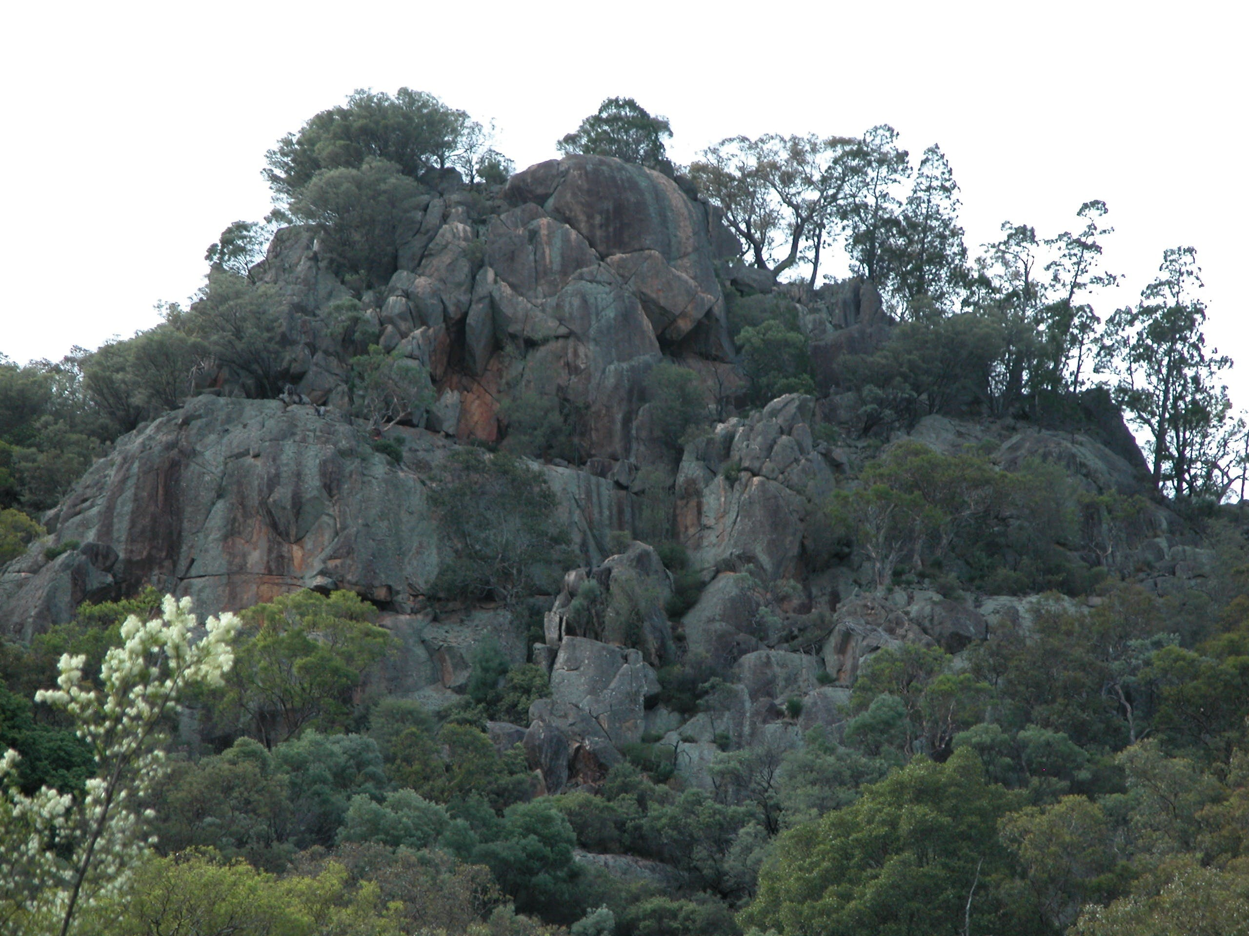 Mount Yarrowyck Nature Reserve - Accommodation Search