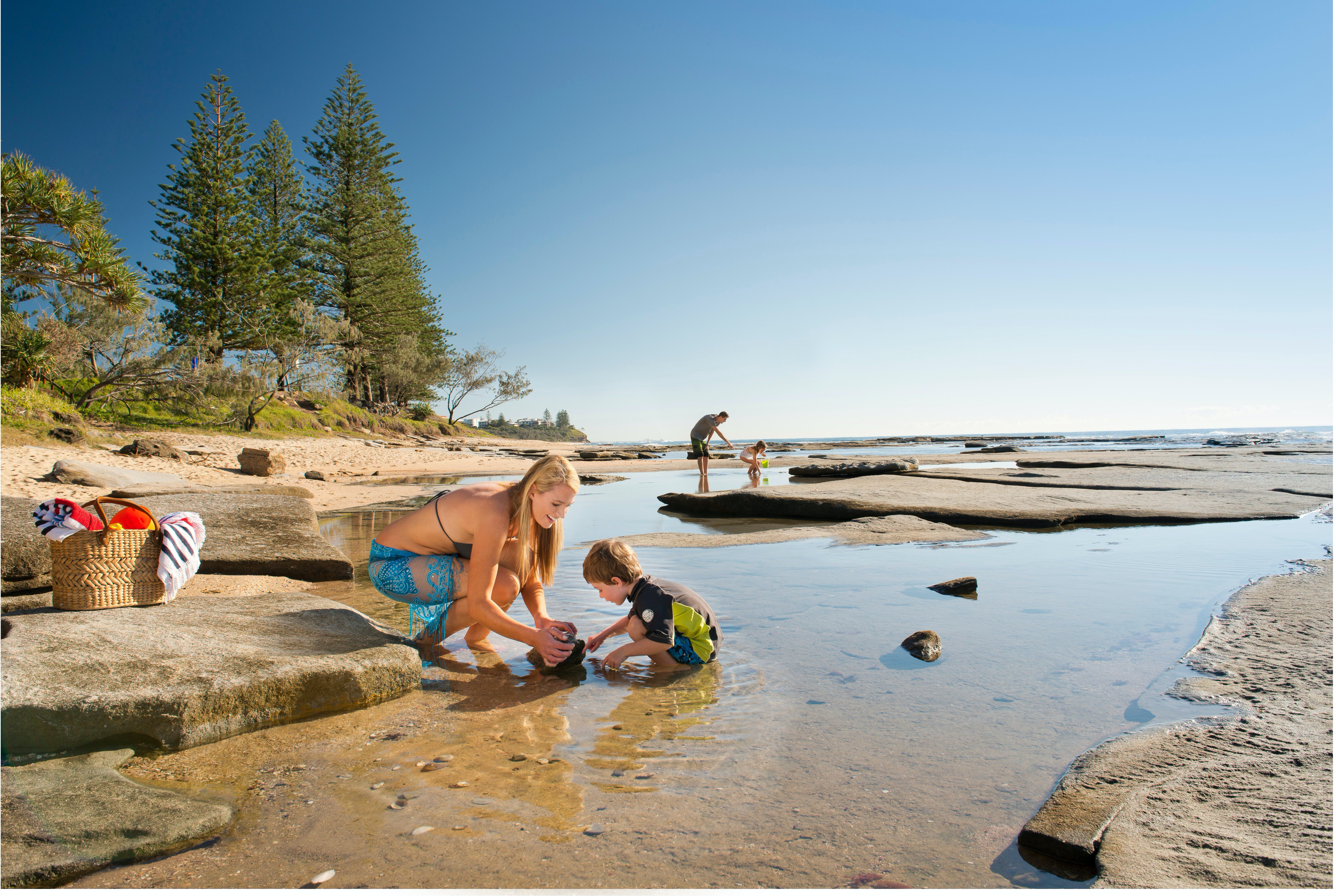 Shelly Beach - Accommodation Search