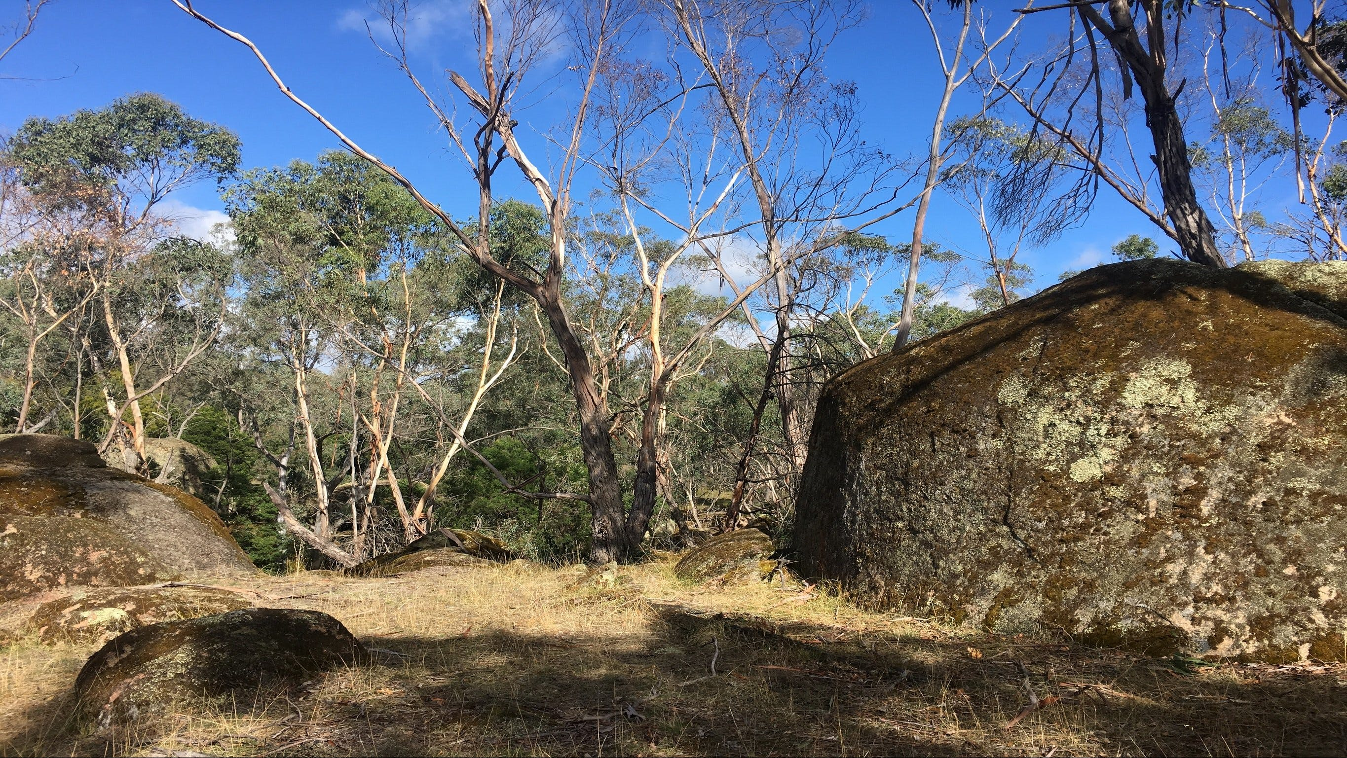 Bailey's Rocks - Dergholm State Park - Accommodation Search