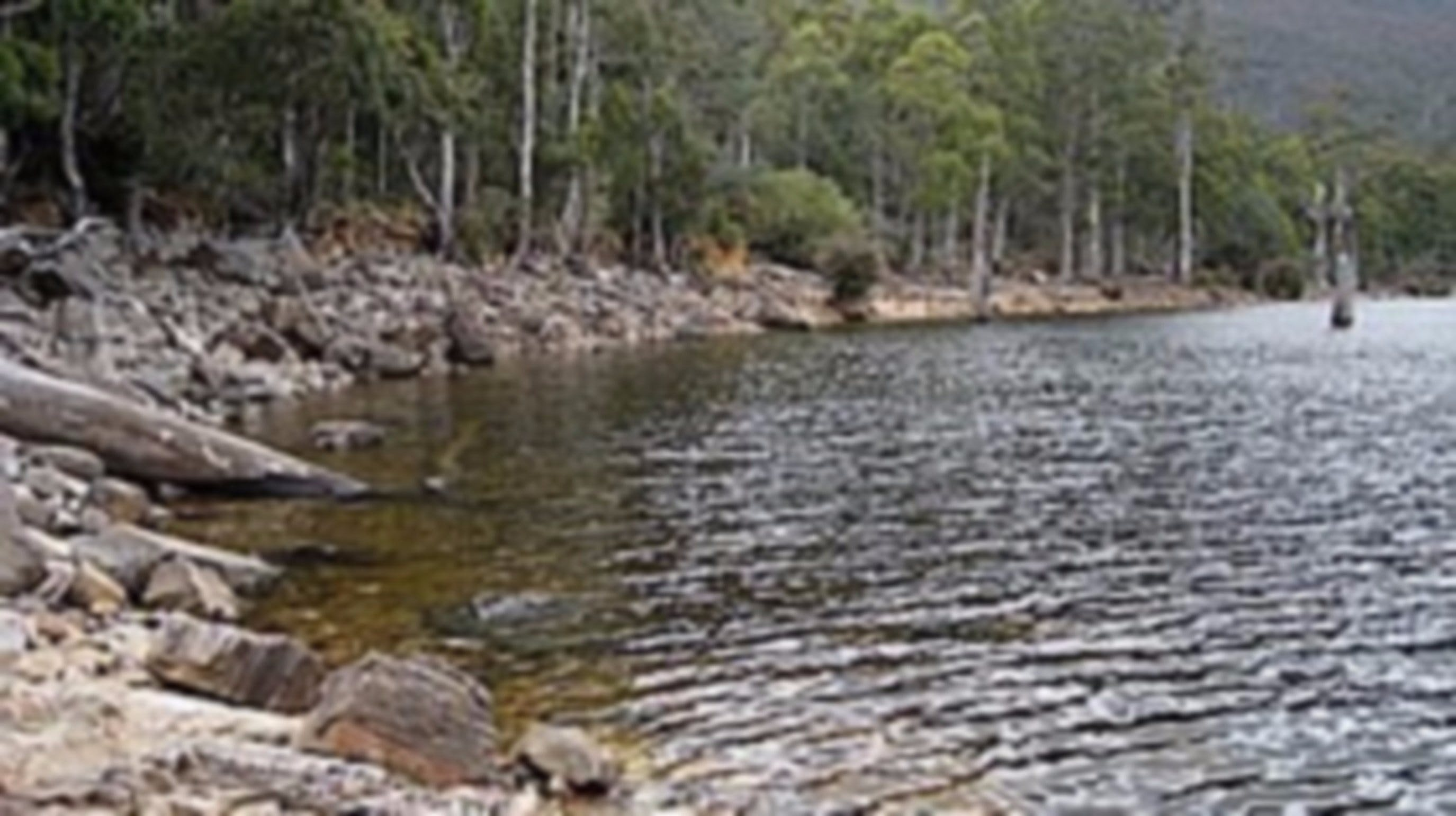 Lake Rowallan - Accommodation Search