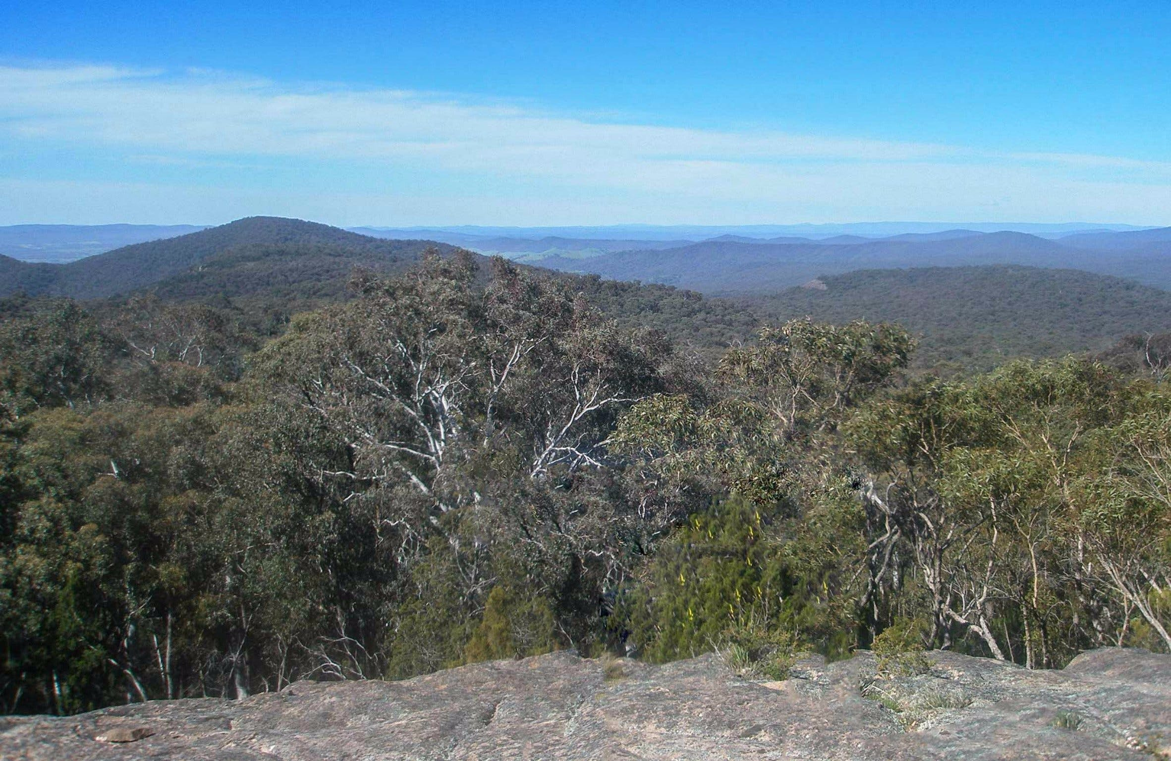 Woomargama National Park - Accommodation Search
