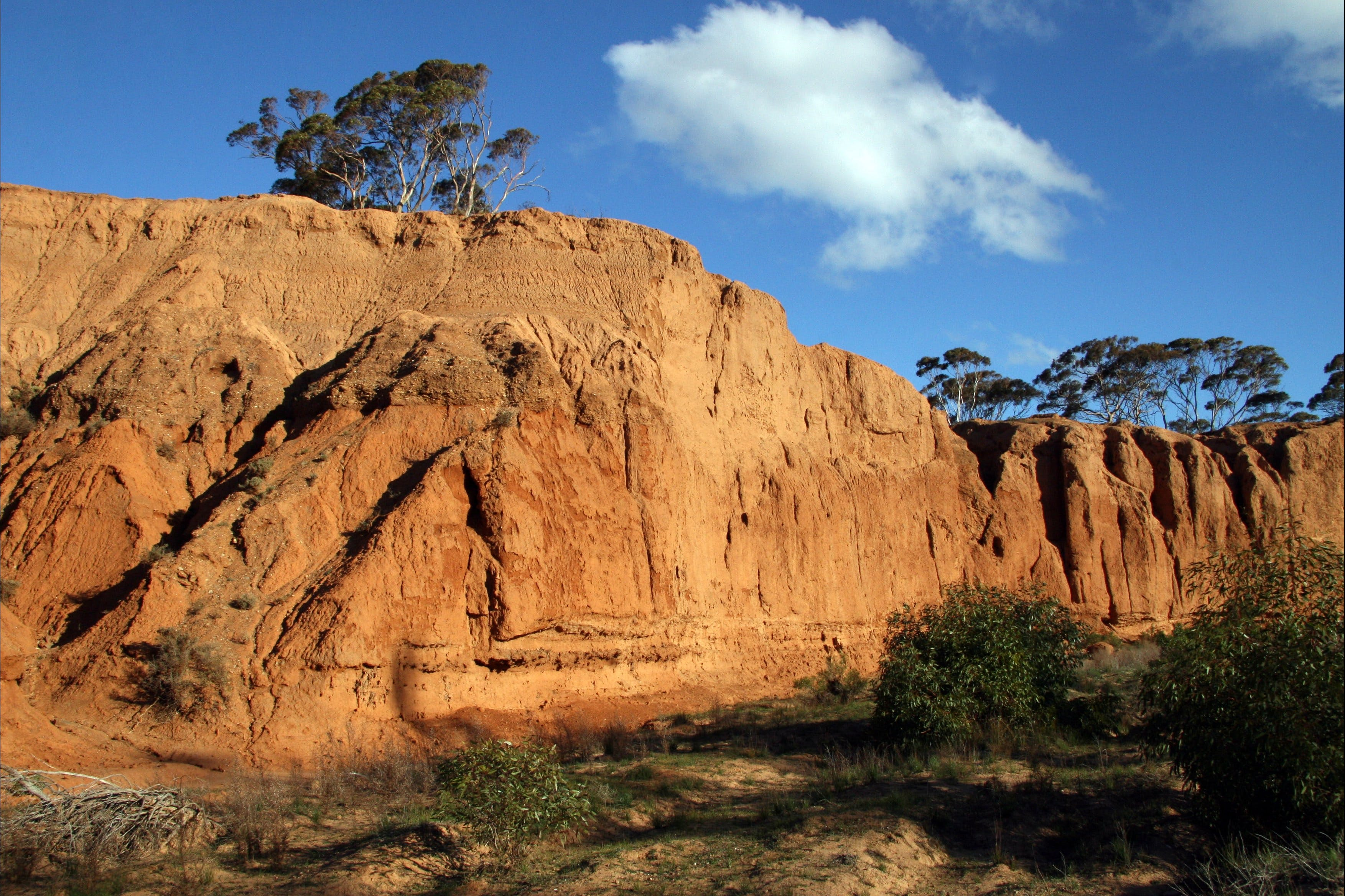 Red Banks Conservation Park - Accommodation Search