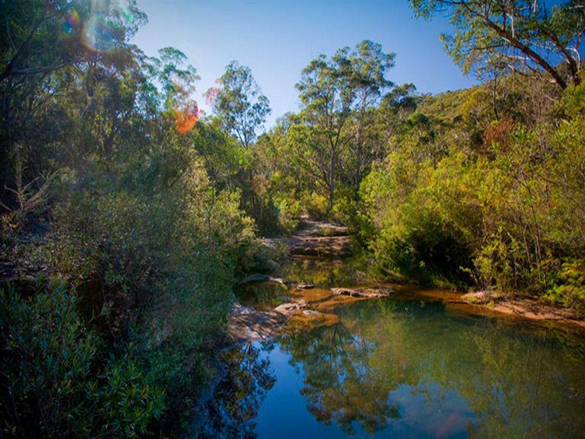 Bargo State Conservation Area - Accommodation Search