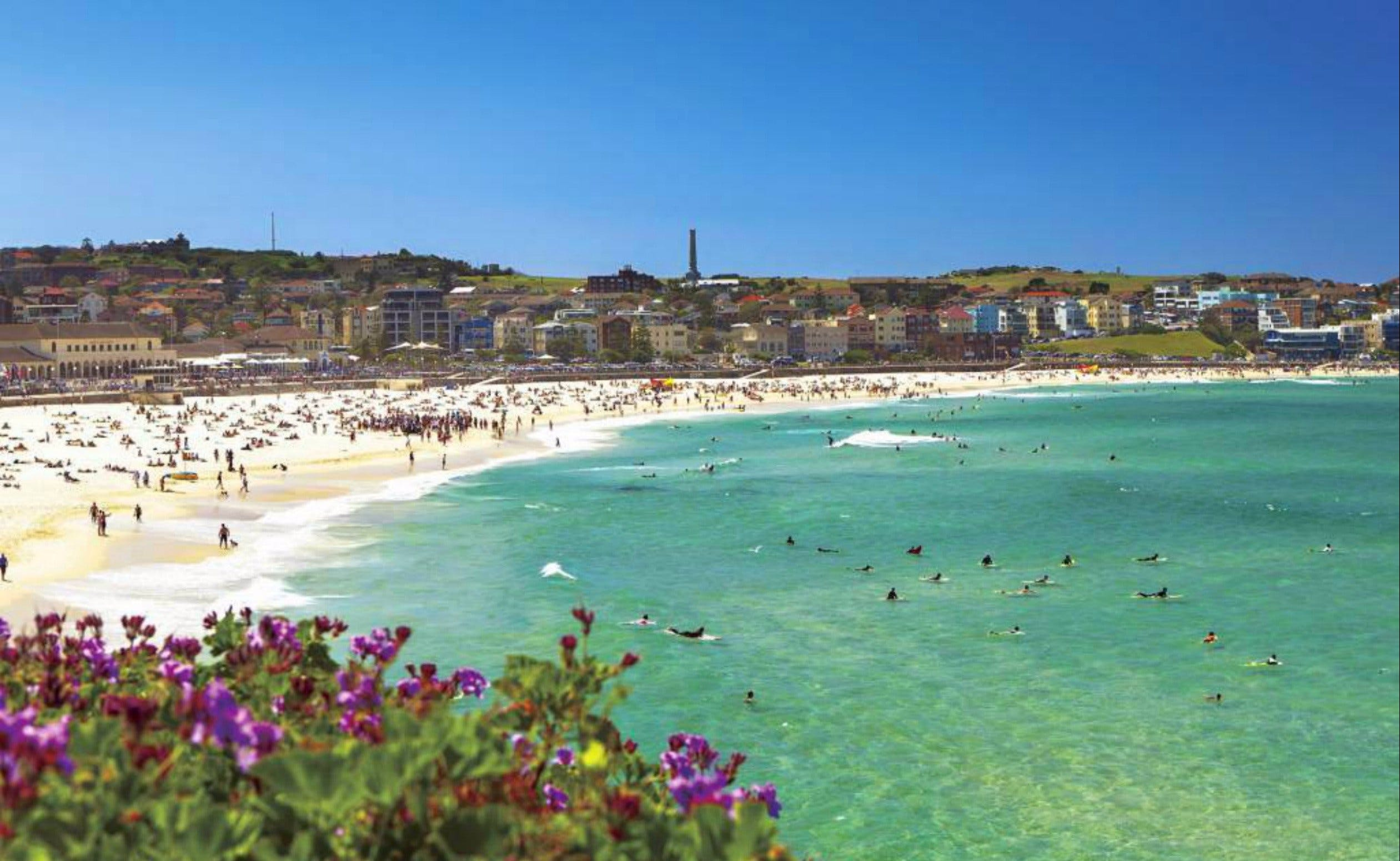Bondi - Accommodation Search
