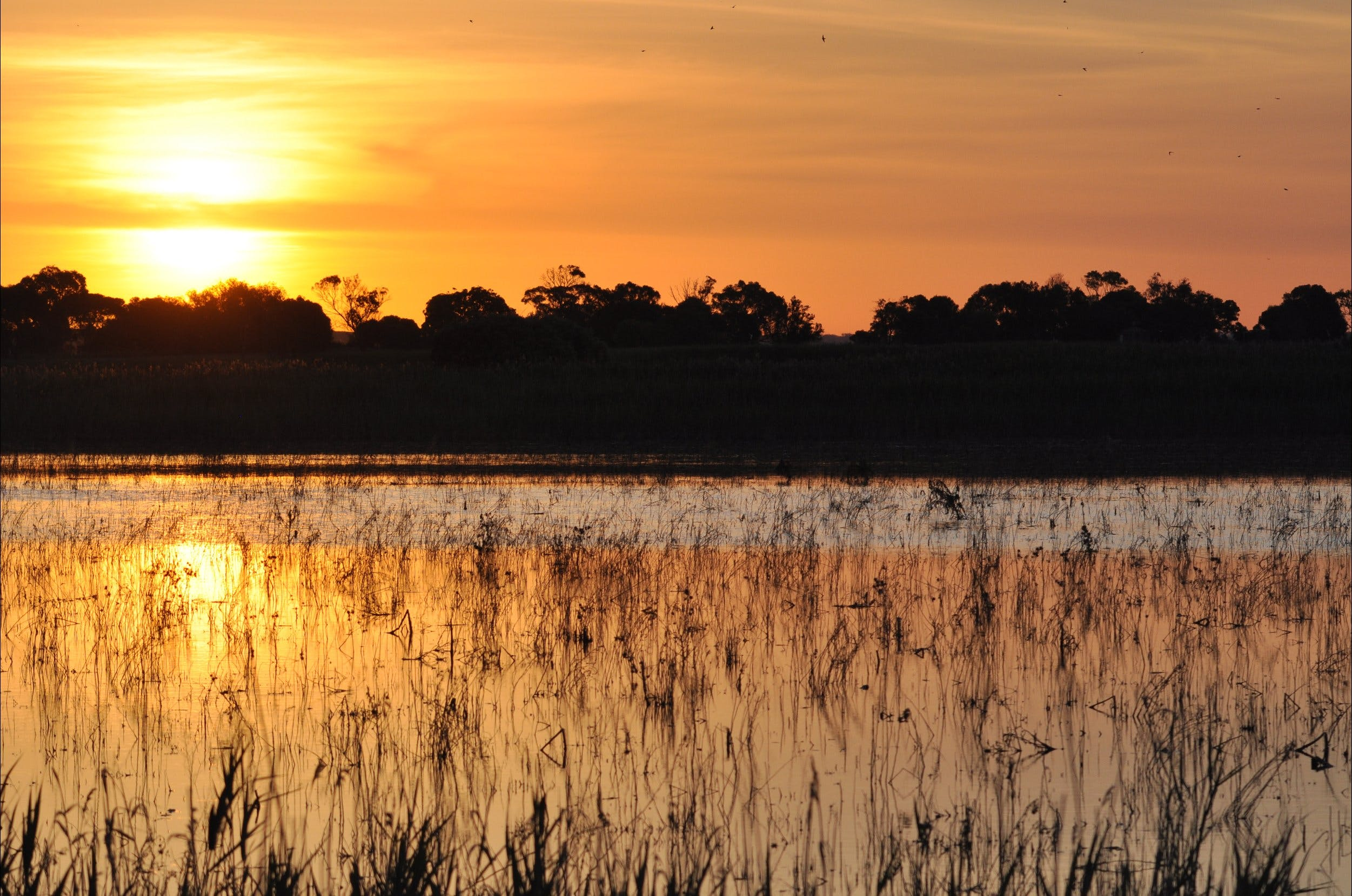 Bool Lagoon Game Reserve and Hacks Lagoon Conservation Park - Accommodation Search