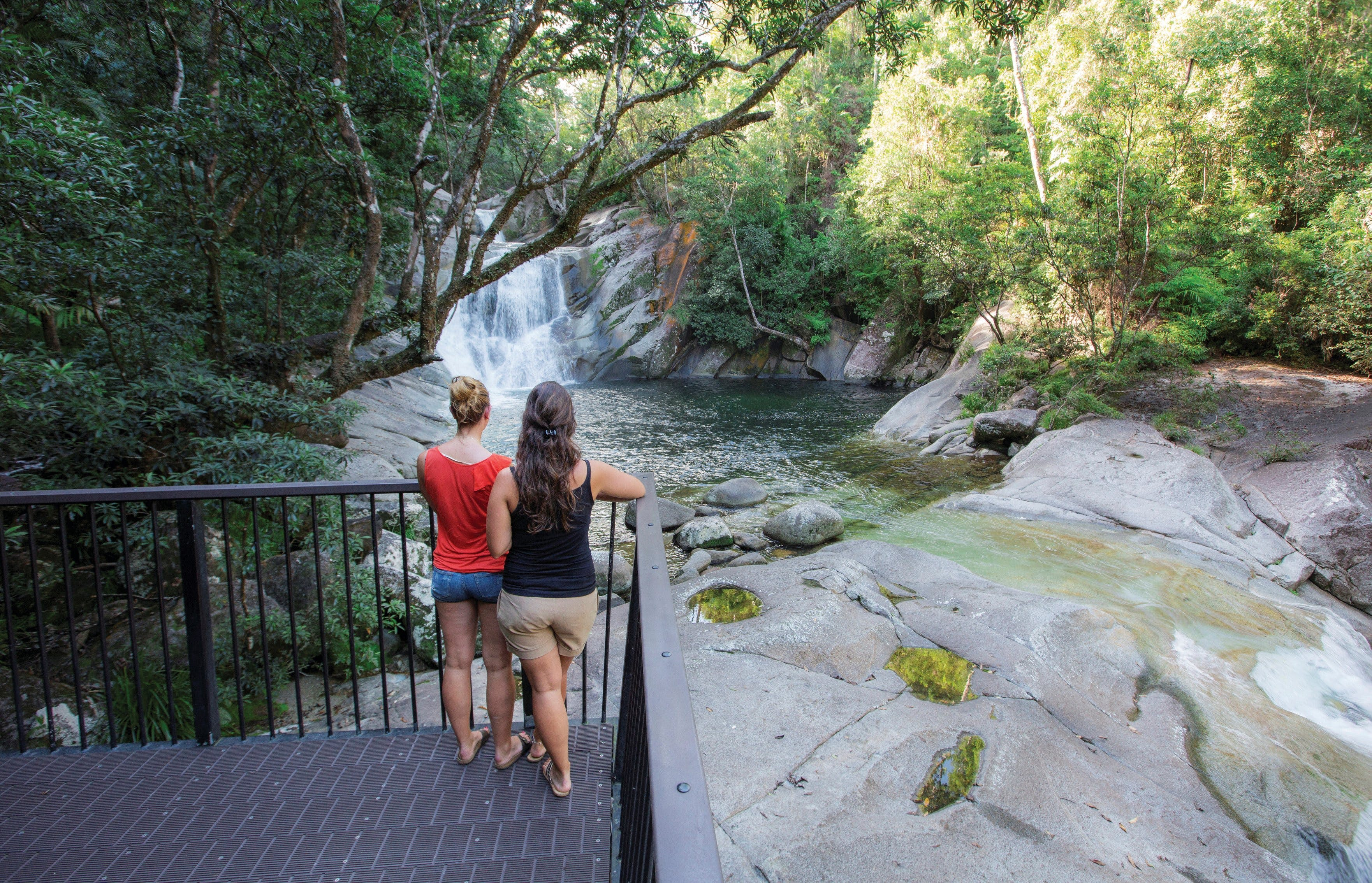 Josephine Falls walking track Wooroonooran National Park - Accommodation Search