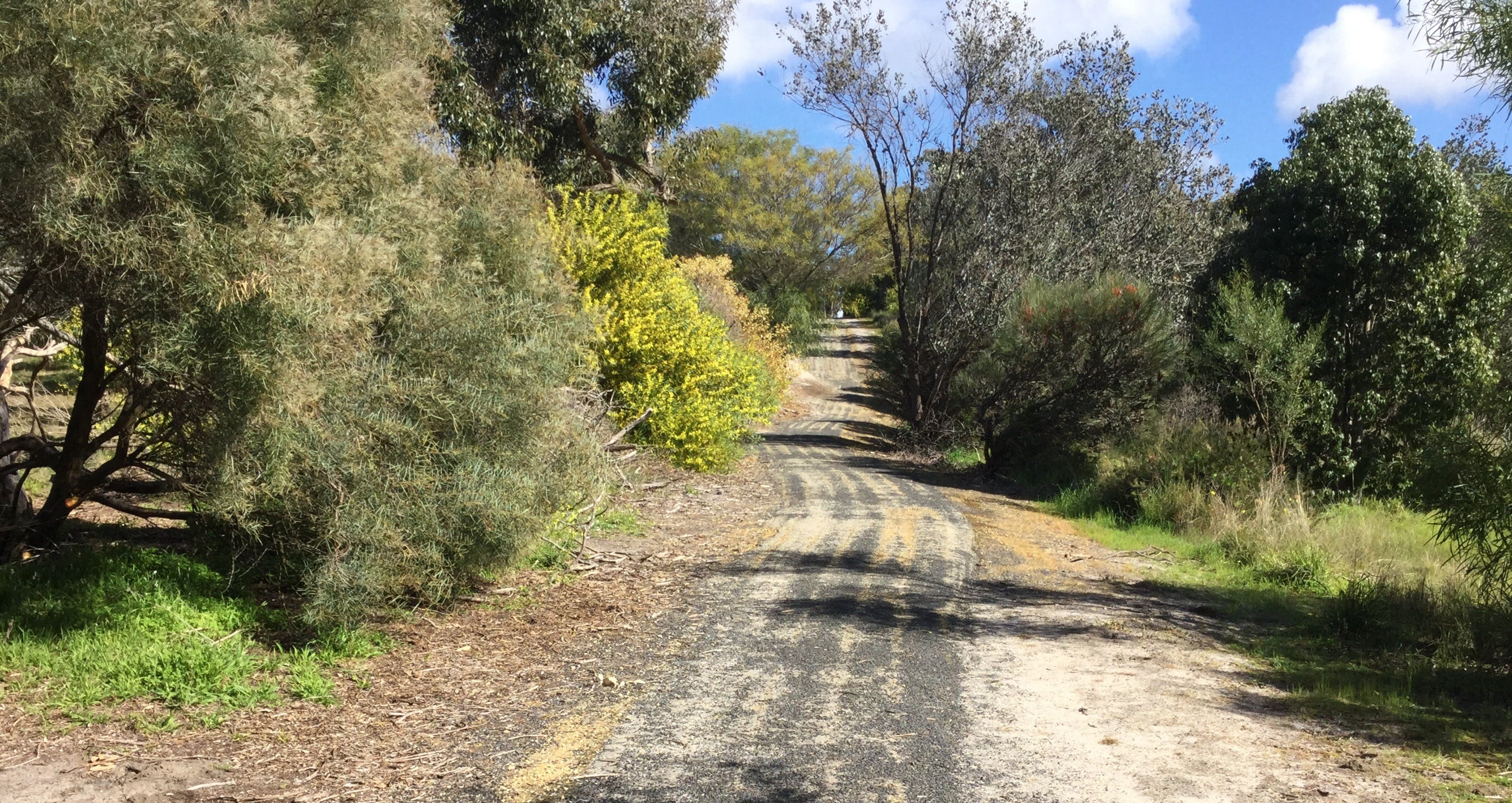 Naracoorte North Nature Park - Accommodation Search