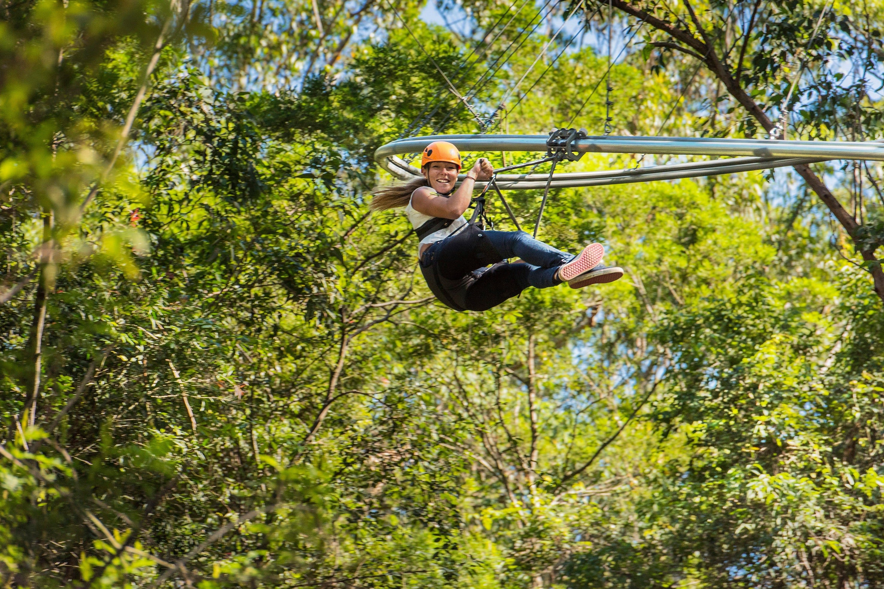 TreeTop Crazy Rider - Accommodation Search