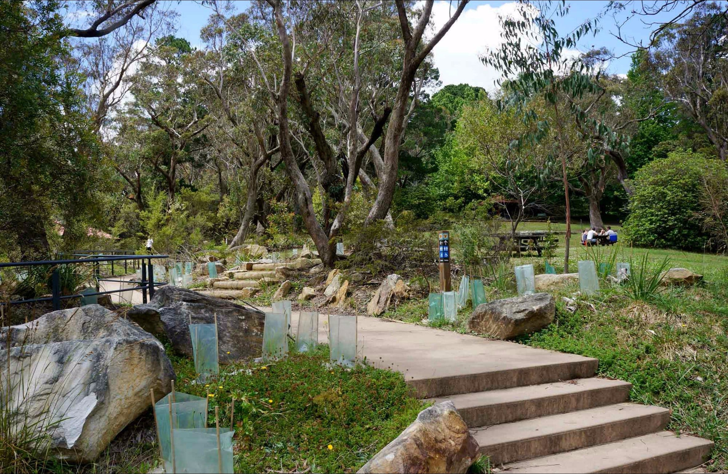 Wentworth Falls picnic area - Accommodation Search