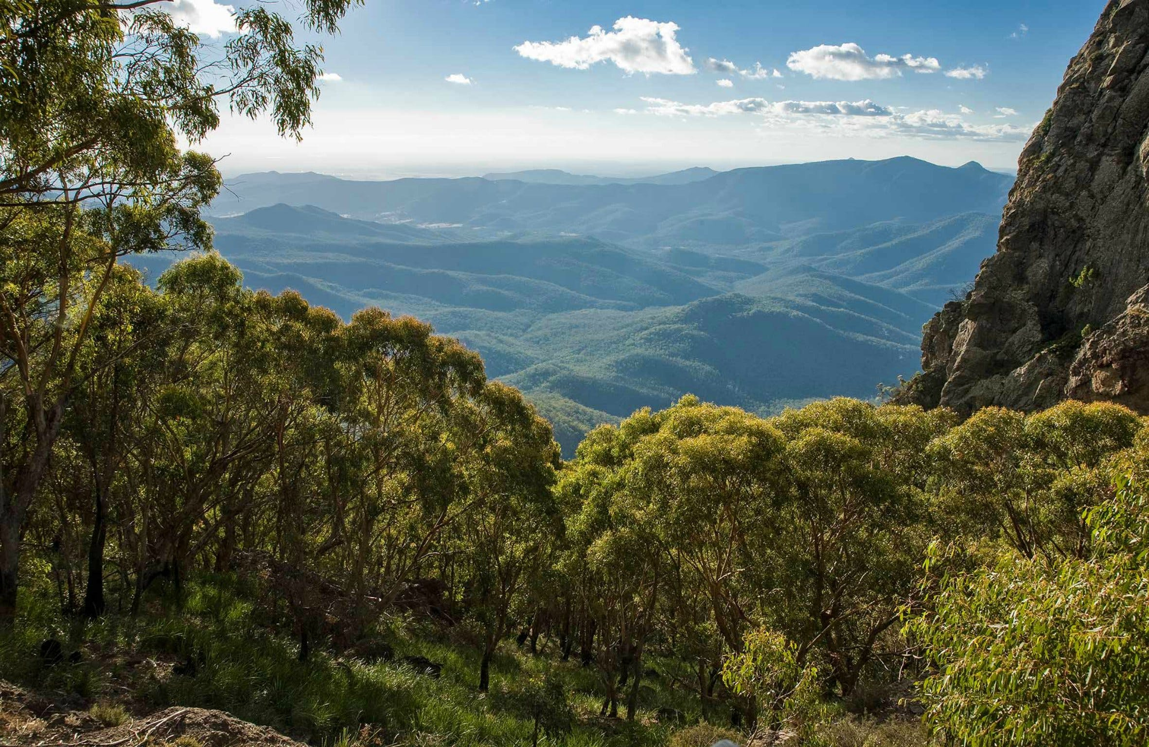 West Kaputar Lookout - Accommodation Search