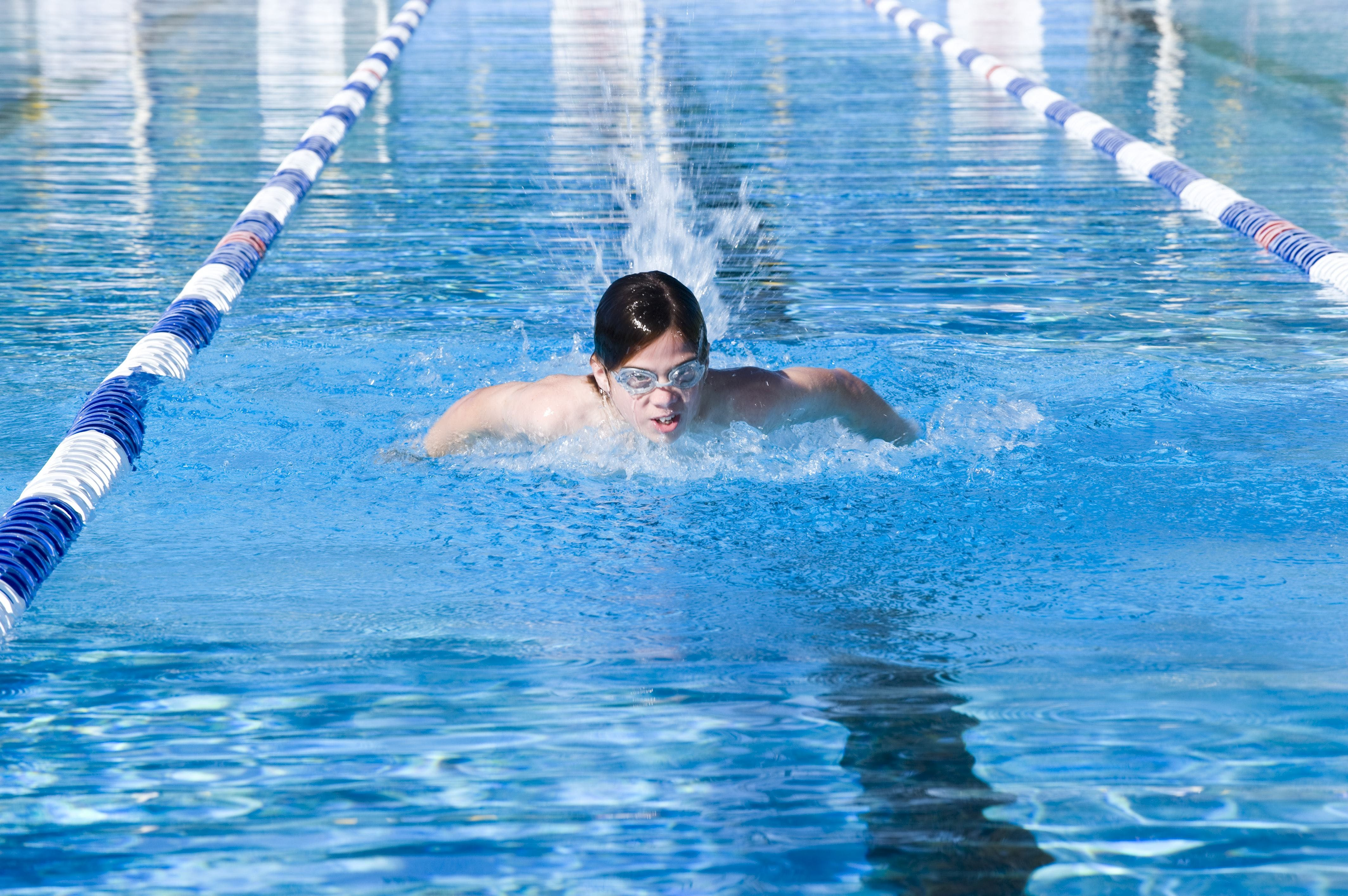 Bomaderry Aquatic Centre - Accommodation Search