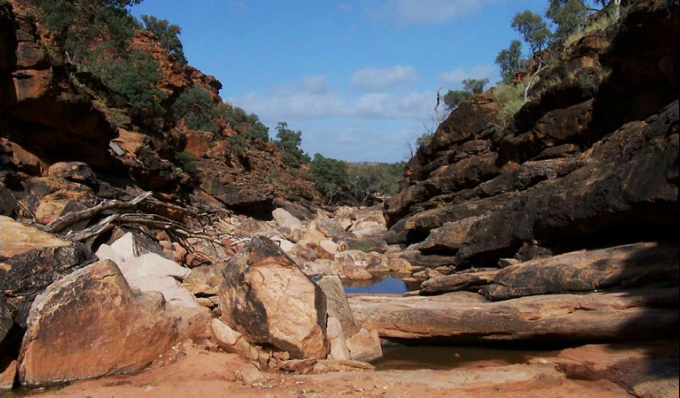 Homestead Gorge trail - Accommodation Search